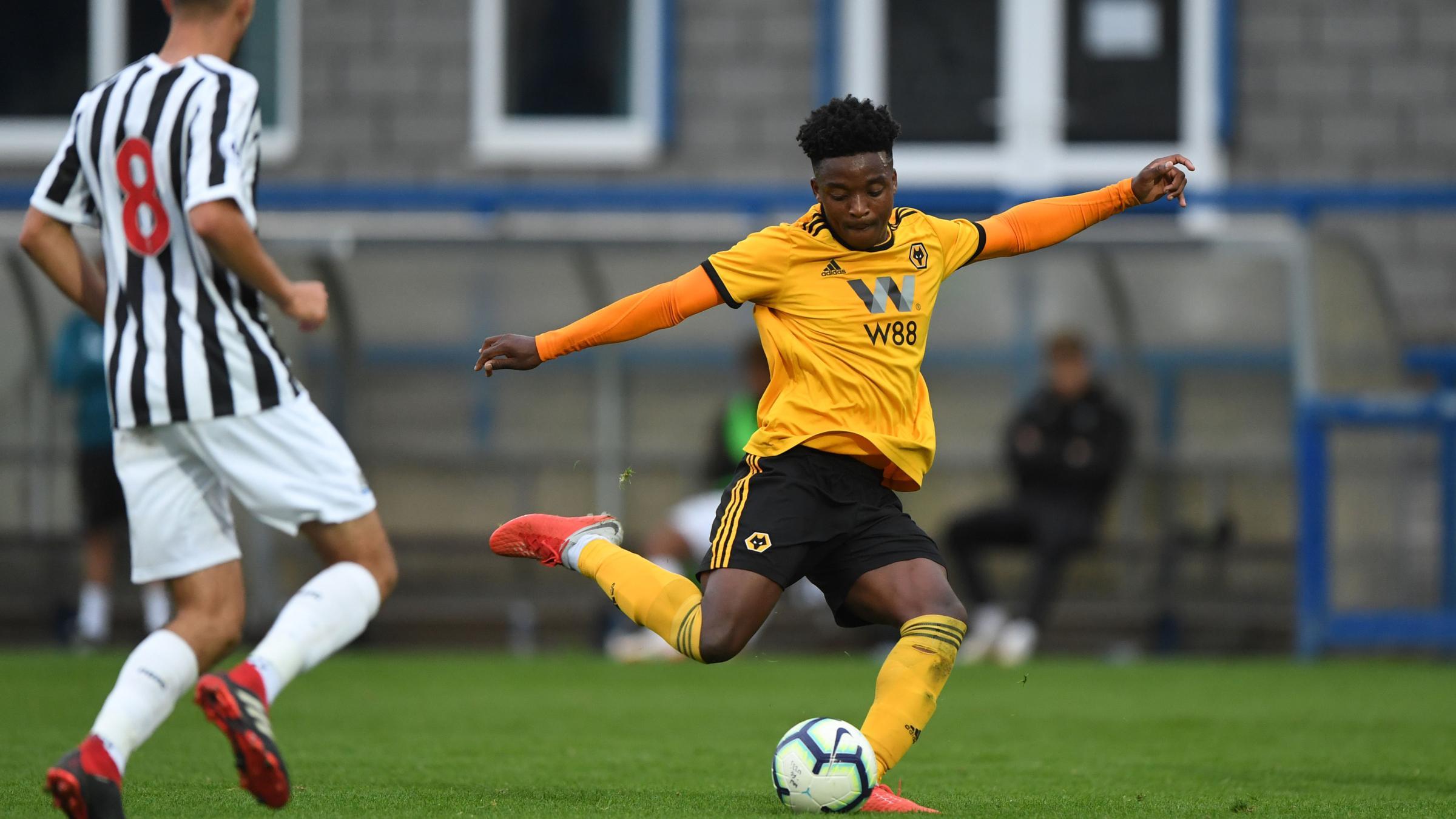 Wolves Vs Newcastle: Under-23s' Match Against Newcastle Postponed
